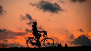 bicycle-bike-cyclist-37836